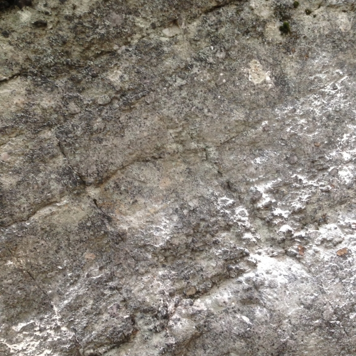This photo contains five bolt holes that were filled, patched, and camouflaged by participants. Photo: Gunks Climbers' Coalition