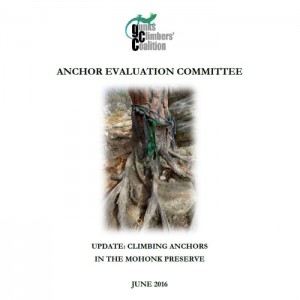 2016 Anchor Evaluation Committee Report cover, Status Update June 2016.