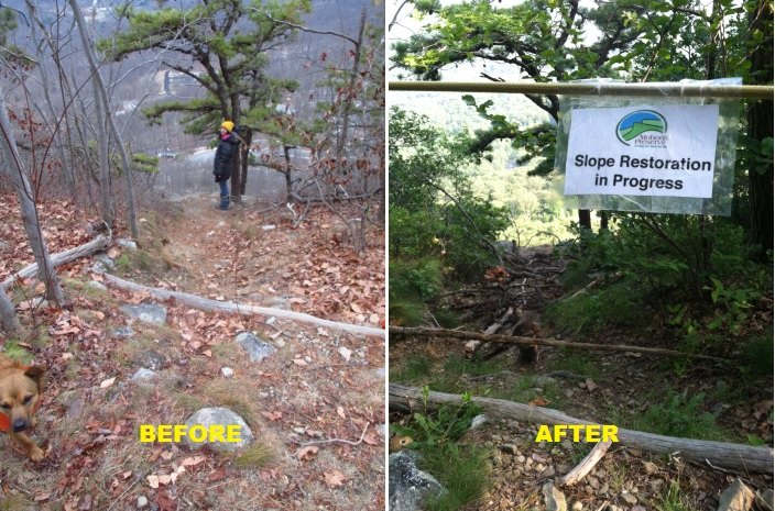 Slope at the top of Betty - before & after slope restoration closure. Photo credit: Gunks Climbers' Coalition.