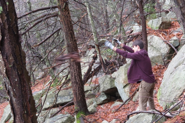 Tossing debris off the trail in the Sleepy Hollow area of the Gunks, Mohonk Preserve. GCC + SUNY New Paltz Outing Club trail work day, April 2019.
