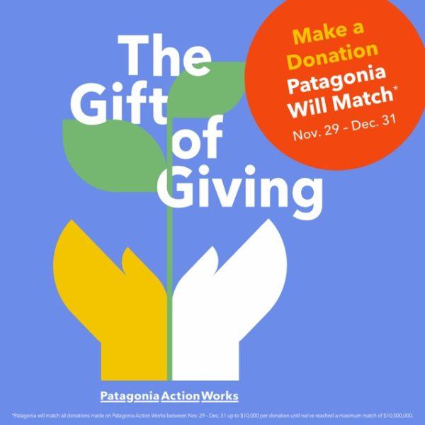 Patagonia action works logo
