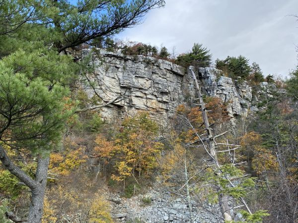 Ant Lion cliff on Millbrook Mountain in the Gunks, purchased by the Gunks Climbers' Coalition.