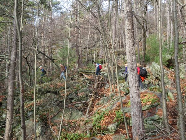 Crossing vegetated talus en route to the Antlion cliff in the Gunks.